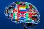 Лекция про иностранные языки в Саратове